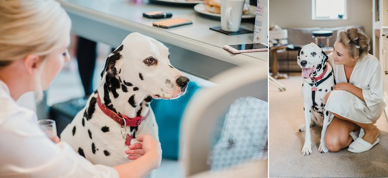 Dalmatian dog and bride pose on her wedding day
